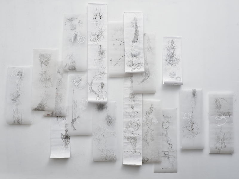 Wall Installation: The Touch of Longing is Everywhere